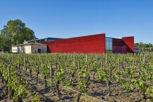 Le vignoble et l'extension du Château La Dominique / Philippe Caumes